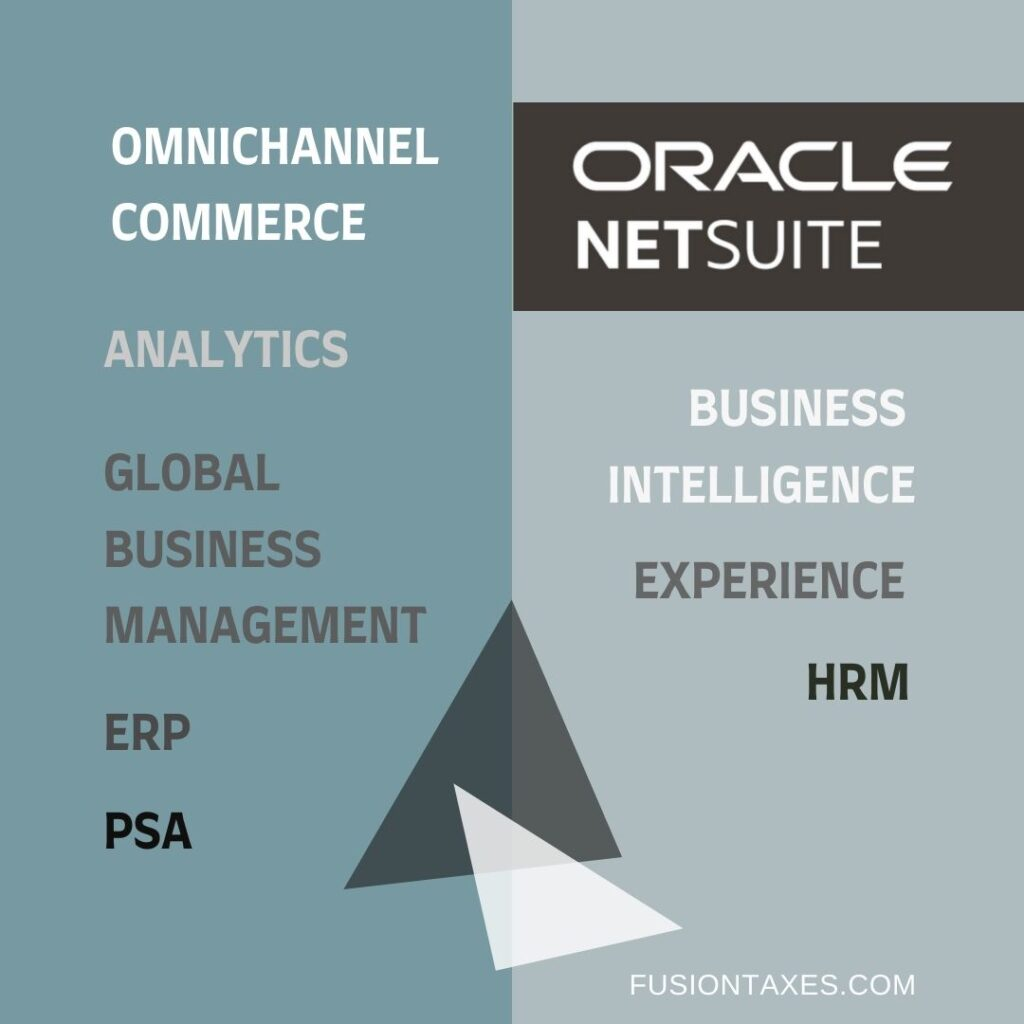 Oracle NetSuite ERP options